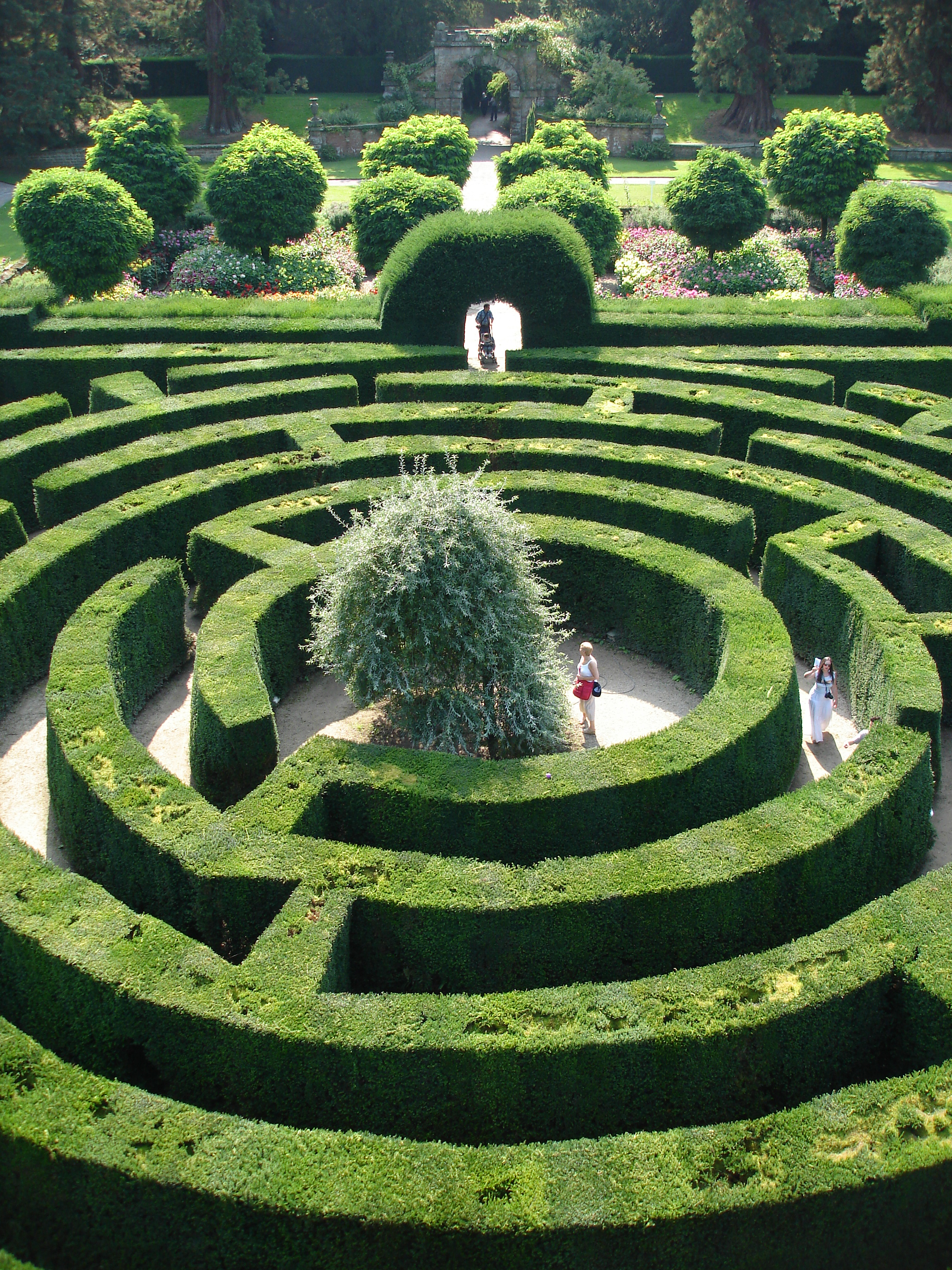 Chatsworth Maze photo courtesy of Chatsworth House Trust